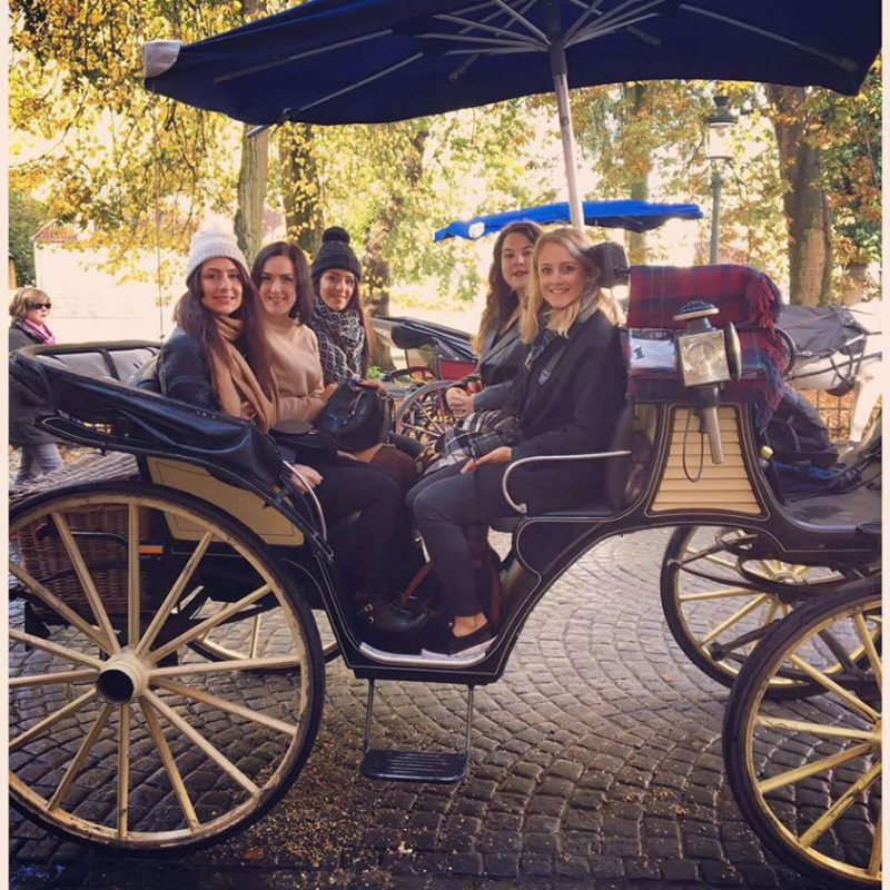 on the horse carriage