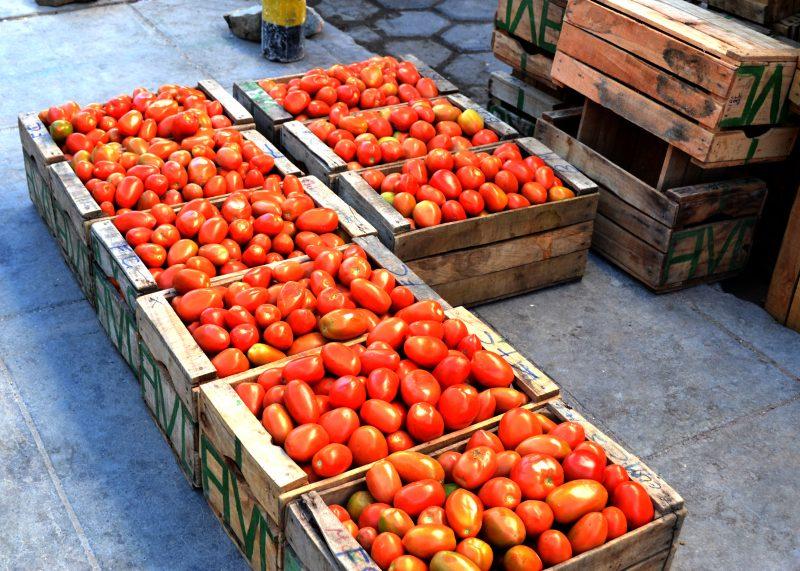 Tomatoes in Uyuni
