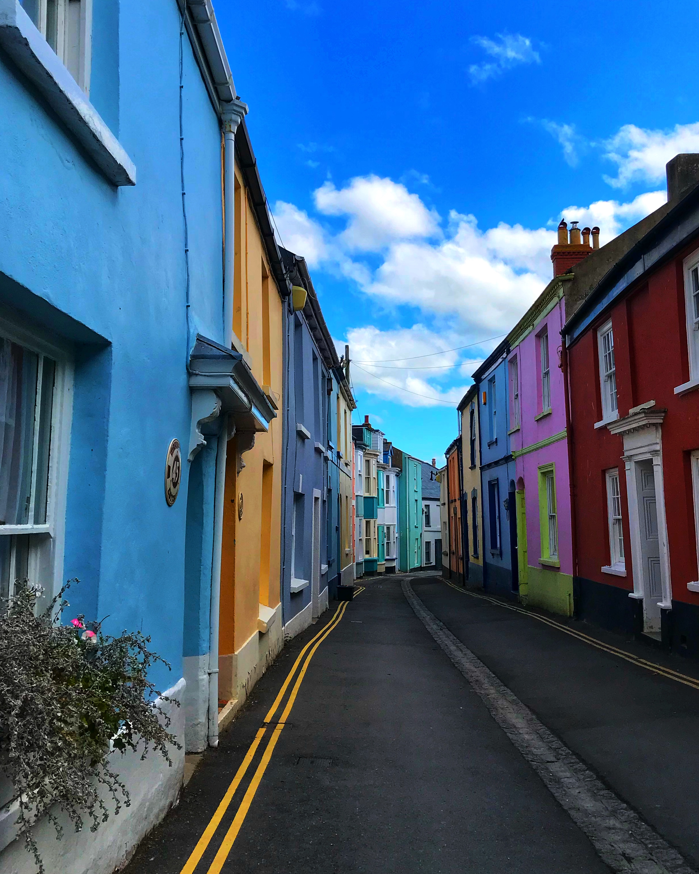 the colourful streets of Appledore