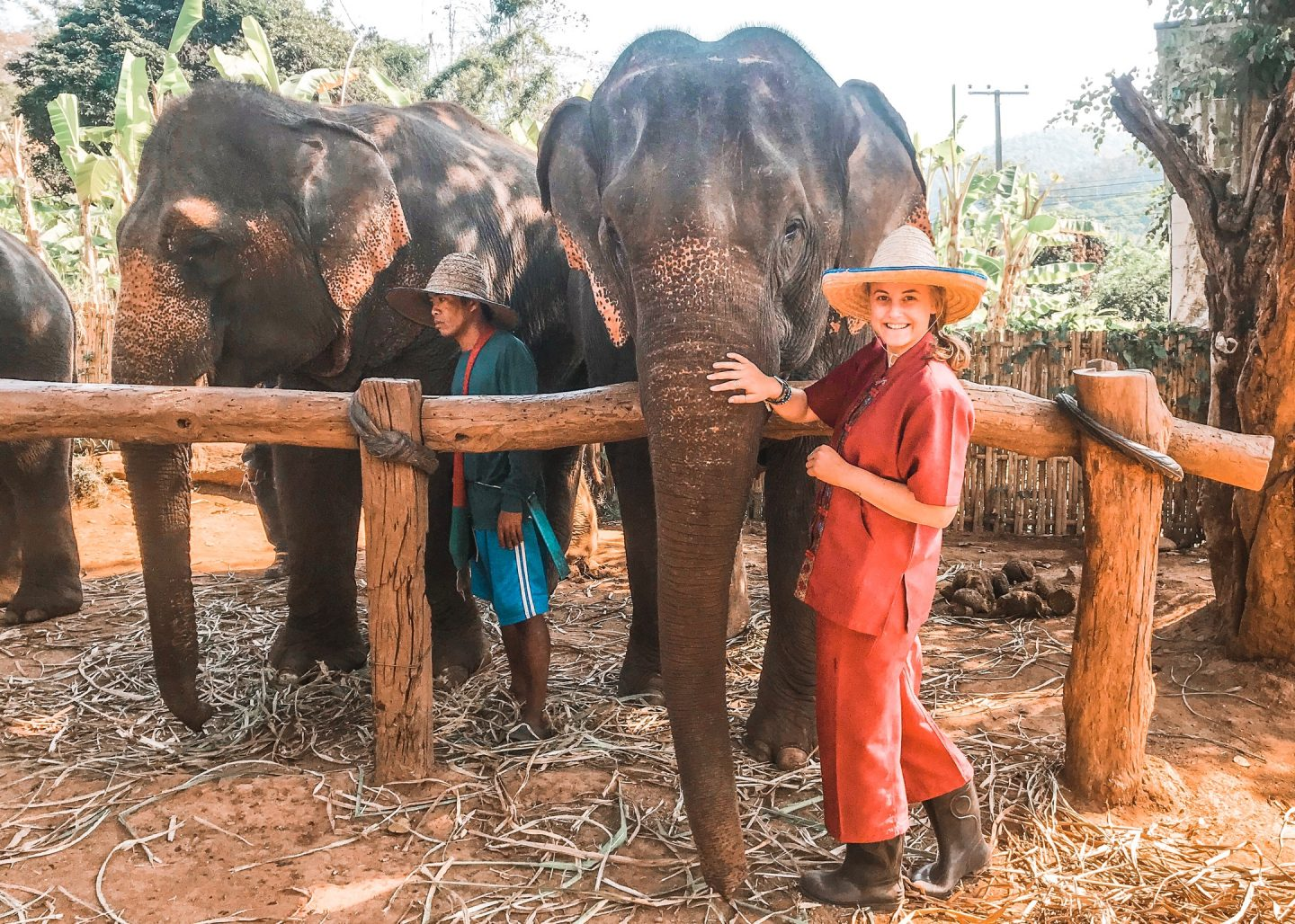standing wearing red with elephants