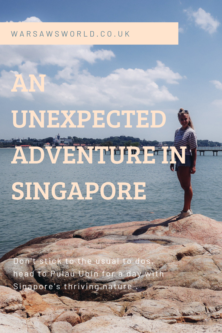 Pulau Ubin: pinterest graphic