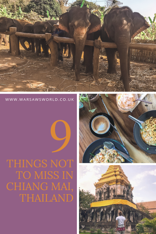 Pinterest graphic with elephants, food and a temple