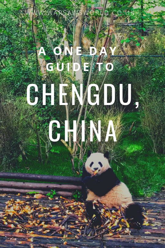 a day in chengdu, china